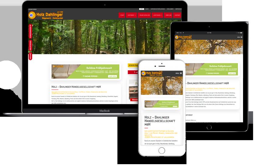 Webseitengestaltung, Website für Holz Dahlinger