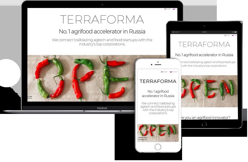 Webdesign terraforma
